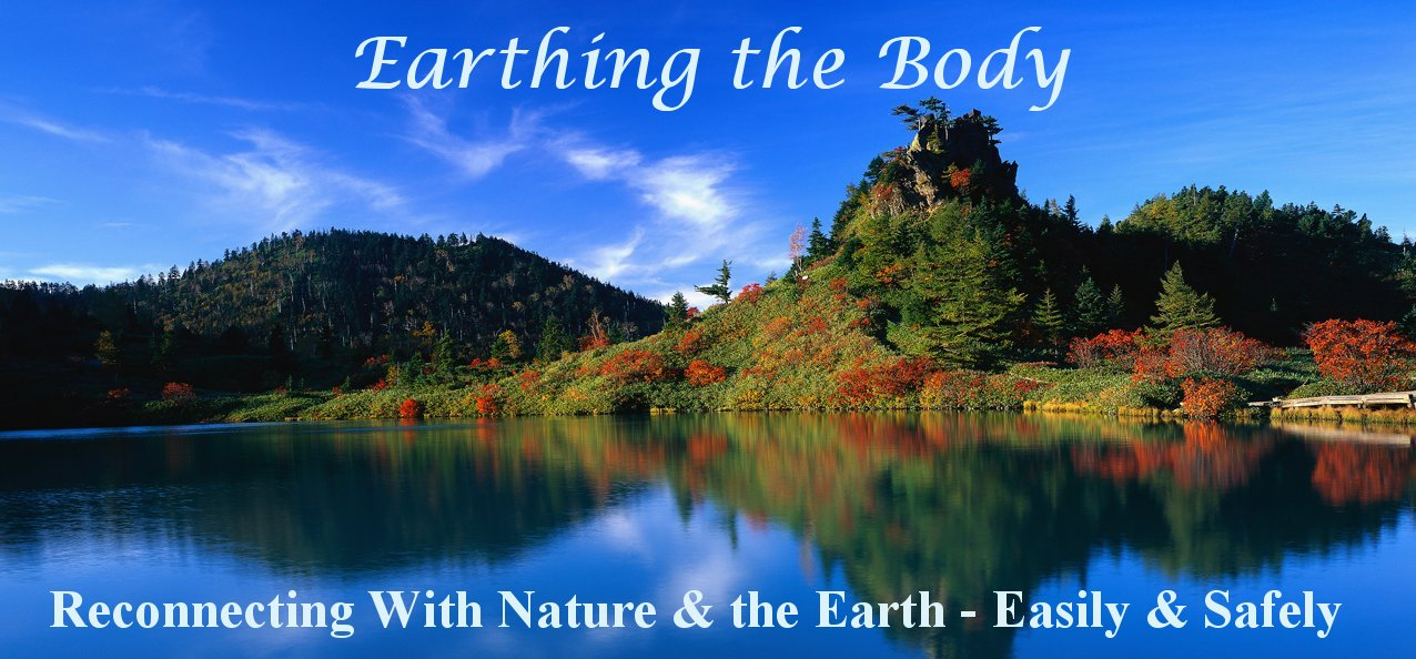 Earthing Therapy Mitronic Health